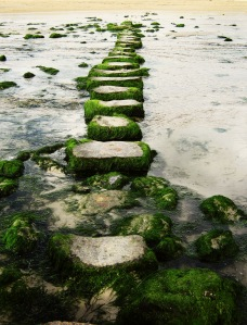 Path of stepping stones